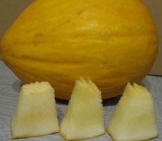 дыня лимонно-желтая