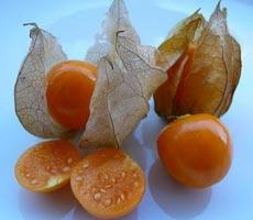 ягодный (земляничный) физалис