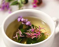 Приготовление отвара иван-чая