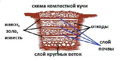 компост своими руками