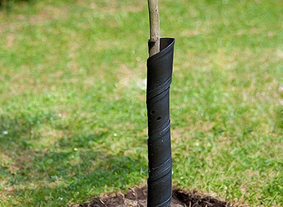 защита стволов деревьев пластиком