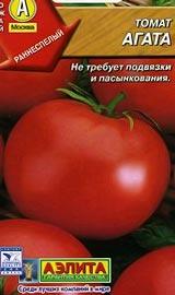 Лучшие сорта низкорослых помидор для открытого грунта Агата