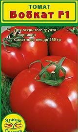 Лучшие сорта низкорослых помидор для открытого грунта Бобкат