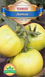 Лучшие сорта низкорослых помидор для открытого грунта Лотос