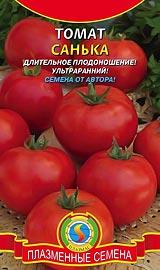 Лучшие сорта низкорослых помидор для открытого грунта Санька