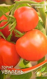 Лучшие сорта низкорослых помидор для открытого грунта Увалень