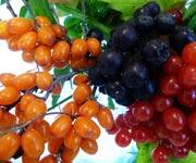 поздние ягоды