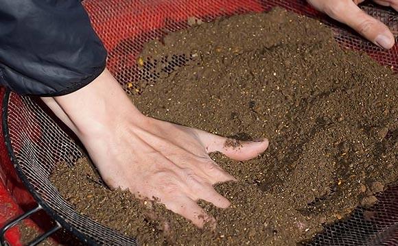 просеиваем почву для рассады томатов