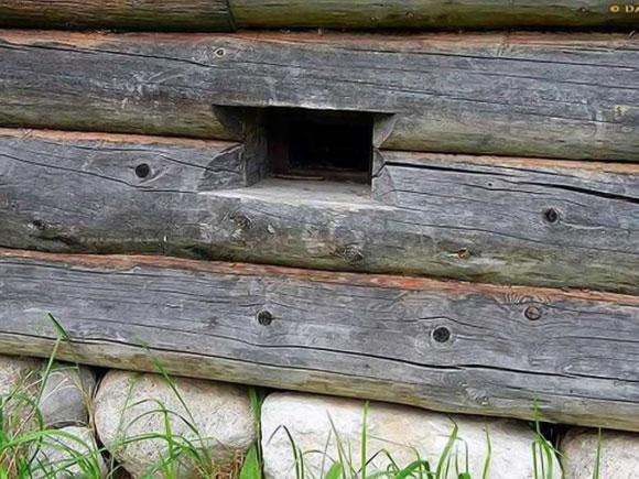 продухи в деревянном доме