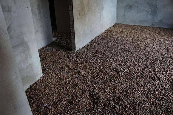 подвал заполнен влаговпитывающим материалом (керамзитом)