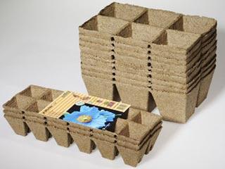 емкости для семян пучковых огурцов