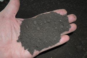 Первый состав грунта для рассады томатов: дерновая земля, речной песок и торф в равных долях