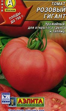 Позднеспелый сорт самоопыляемых томатов Гигант розовый