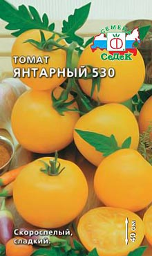Ультраскороспелый сорт самоопыляемых томатов Янтарный
