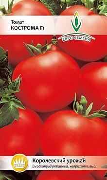 Сорт самоопыляемых томатов, устойчивый к микробным и грибковым вредителям Кострома