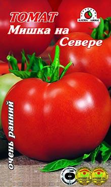 Ультраскороспелый сорт самоопыляемых томатов Мишка на Севере
