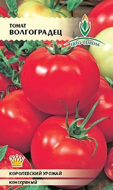 Сорт самоопыляемых томатов с высокой степенью лежкости Волгоградец